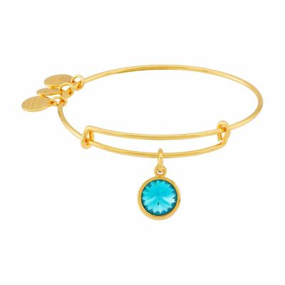 Alex And Ani - Alex and Ani Bangle Bar December Birthstone Yellow-Gold Expandable A09EB251G