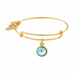 Alex and Ani Bangle Bar March Birthstone Yellow-Gold Expandable A09EB242G - Thumbnail