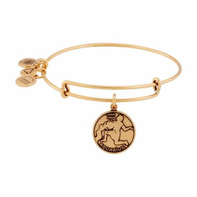Alex And Ani - Alex & Ani Rafaelian Gold Finish Aquarius II Expandable Wire Bangle A13EB01AQRG