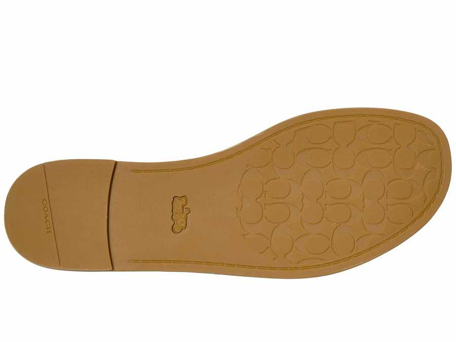 Coach Women Black/Natural Liza Flat Sandals