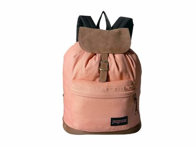 Jansport - Jansport Muted Clay Haiden Backpack