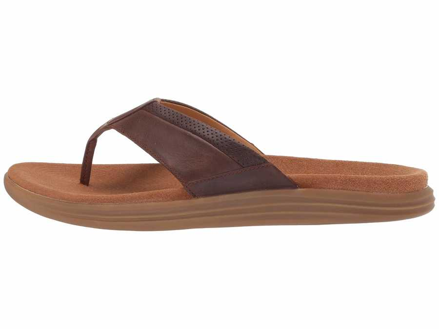 Sperry Men Brown Gold Cup Amalfi Thong Flip Flops